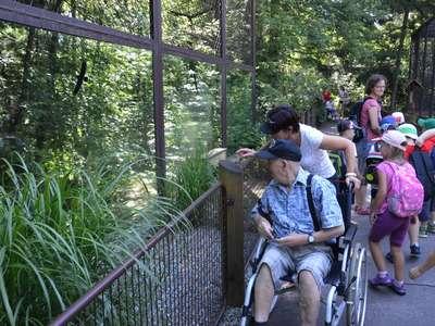 Výlet do zoo ostrava