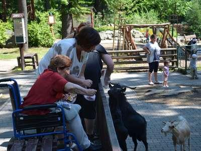 Výlet do zoo ostrava 2